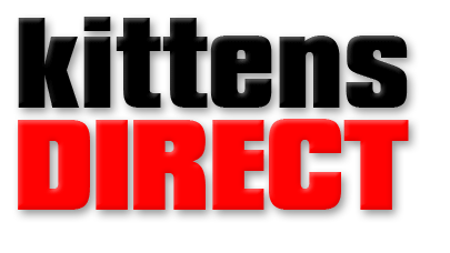 kittensdirect logo